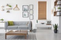 Sivá pohovka v obývačke s prírodnými doplnkami