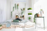 Biela bohémska spálňa s izbovými rastlinami