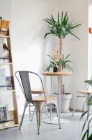 Menší okrúhly stolík so stoličkami, knižnica a rastliny