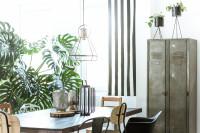 Jedálenský stôl, rôzne stoličky, kovové skrine a rastliny