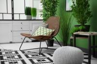 Kreslo, puf, dva stolíky, čierno-biely koberec a rastliny