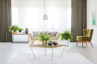 Obývačka so škandinávskou pohovkou a zeleným retro kreslom