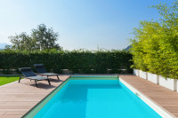 Zapustený záhradný bazén ukrytý za zeleňou