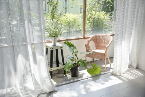Relaxačný kút s ratanovým kreslom a izbovými rastlinami