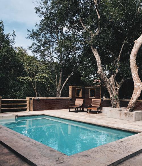 Vonkajší bazén pod stromami