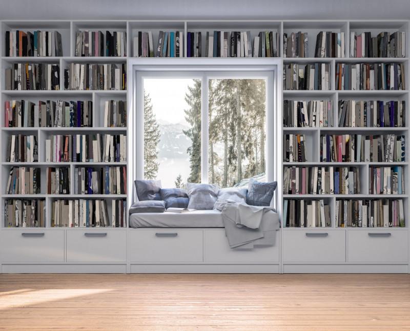 Podľa čoho si vybrať domácu knižnicu - #983