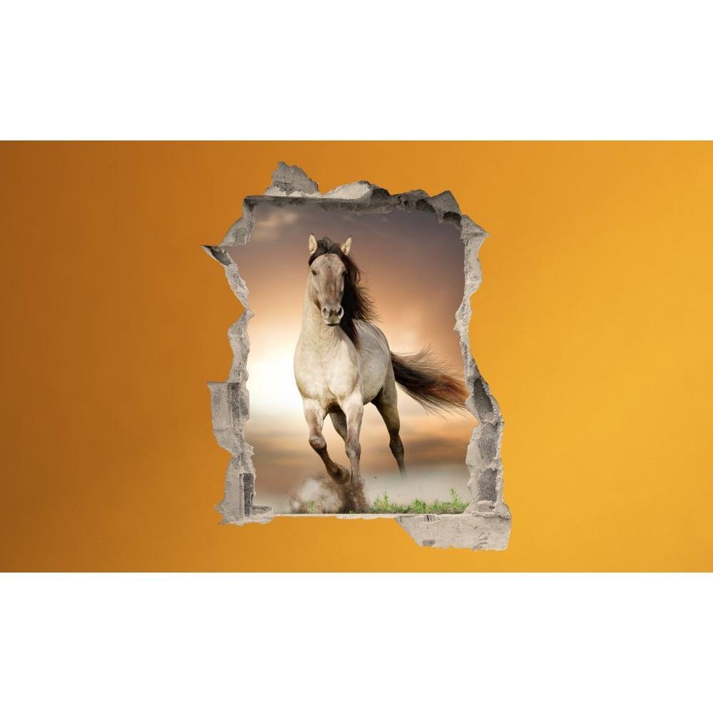 3D fototapeta, Freedom, 100 x120cm