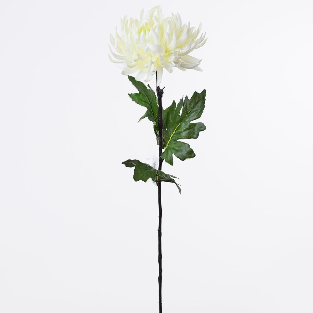 Chryzantéma kus biela 60x17cm 1500366