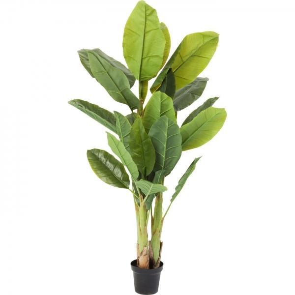 Dekorativní rostlina Banana Tree 180 cm