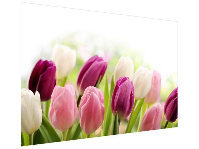 Fototapeta Farebné jemné tulipány 200x135cm FT2125A_1AL
