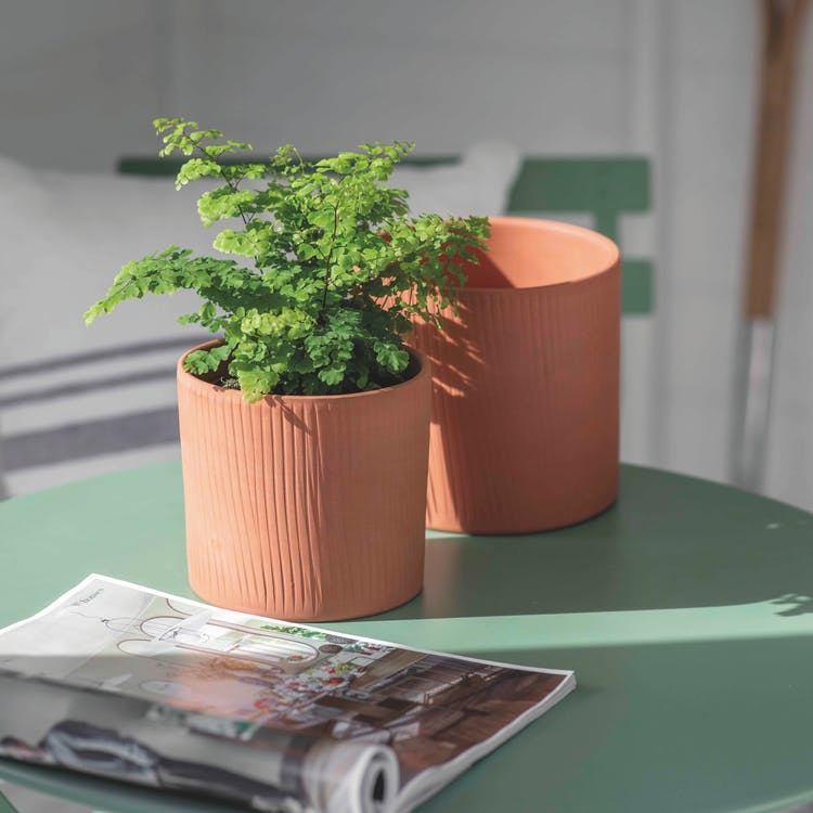 Garden Trading Keramický kvetináč Edgehill Stoneware - set 2 ks