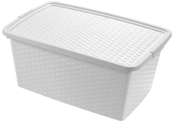 heidrun Plastový úložný box s veko HEIDRUN 10l