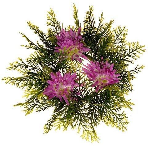 Koniferový venček s chryzantémami, pr. 25 cm