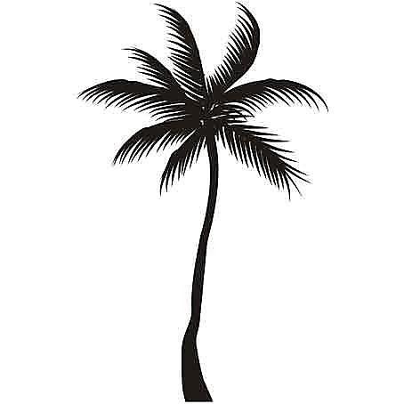 Nálepka na stenu - Tropická Palma  _tx29