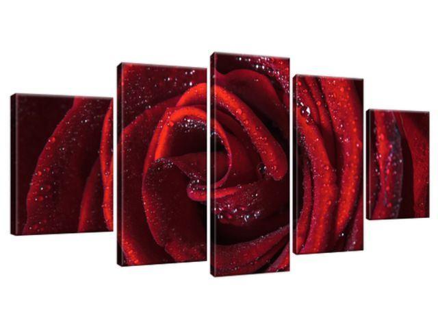 Obraz na plátne Bordová ruža 150x70cm 2047A_5B