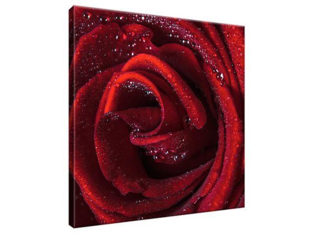 Obraz na plátne Bordová ruža 30x30cm 2047A_1AI