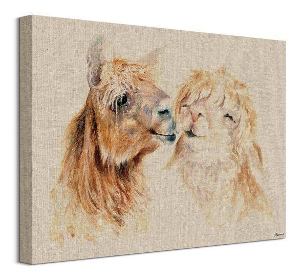 Obraz na plátne Zamilované lamy Bannon Jane 30x40cm WDC92973