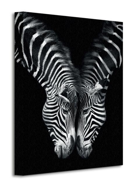 Obraz na plátne Zamilované zebry Cano Marina 30x40cm WDC92373