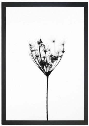 Obraz Tablo Center Misty Splender, 24 × 29 cm