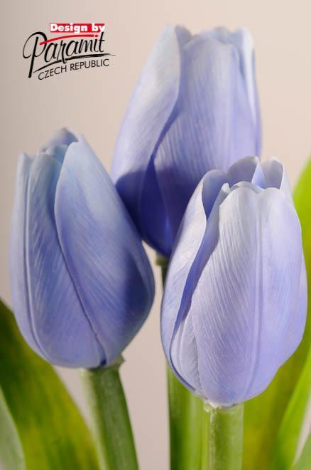 Paramit Tulipán kus 40cm modrý 107 B1