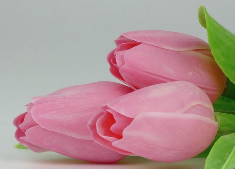Paramit Tulipán kus 40cm ružový 107 P5