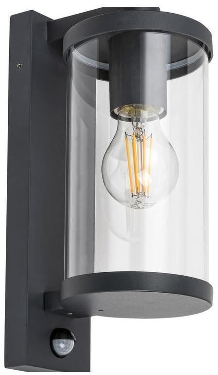 Rabalux - Vonkajšie nástenné svietidlo so senzorom 1xE27/60W/230V IP44