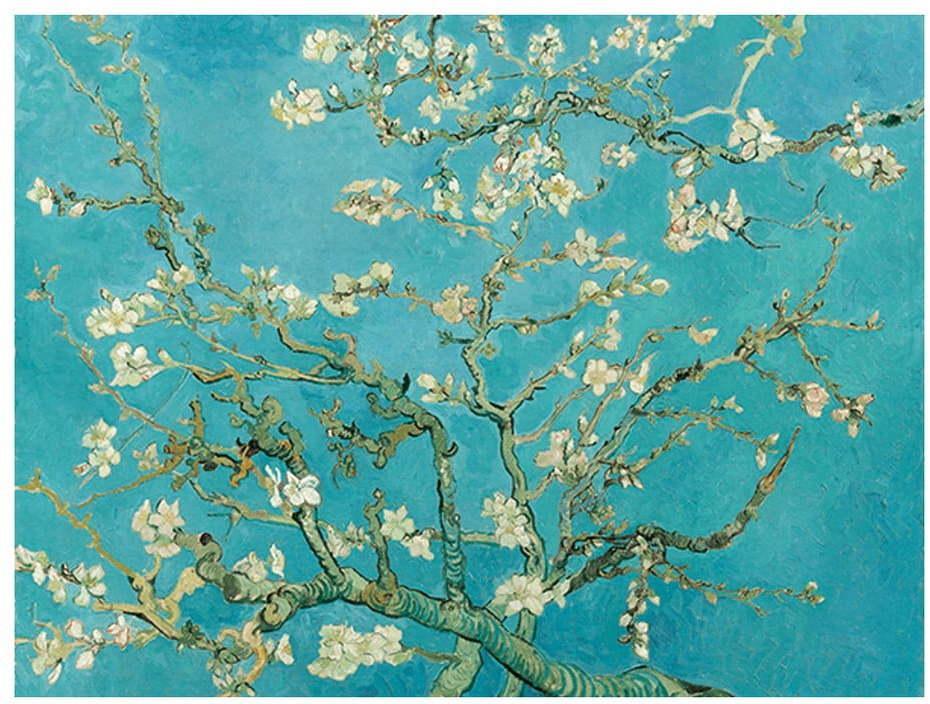 Reprodukcia obrazu Vincenta van Gogha - Almond Blossom, 70 × 50 cm