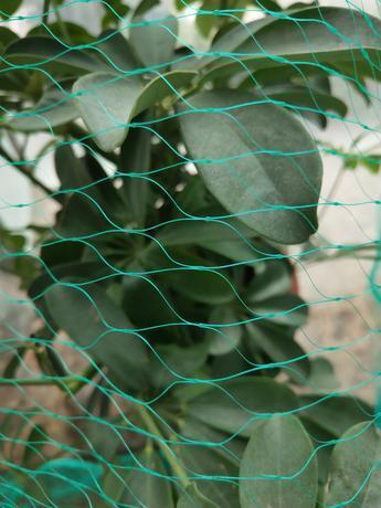 TORO Ochranná sieť proti vtákom Toro 4 x 5 m