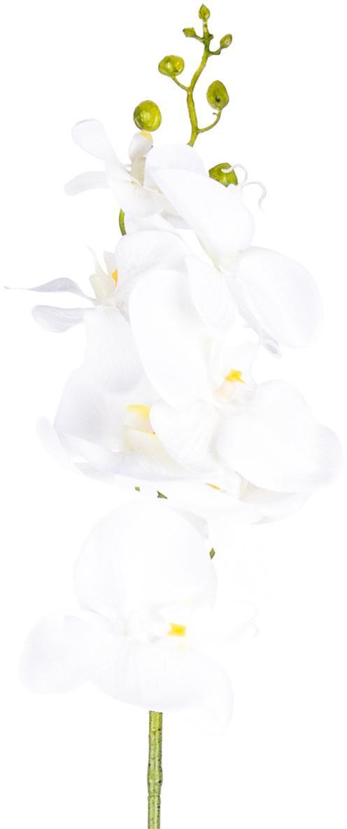 Umelá Orchidea čisto biela, 86 cm