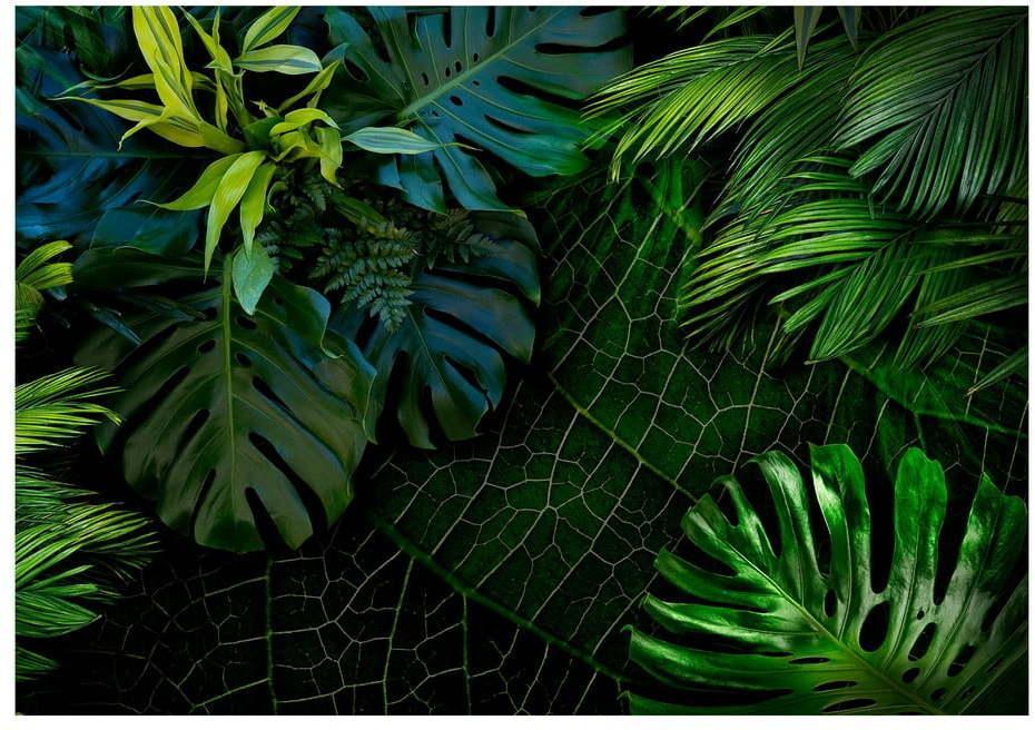 Veľkoformátová tapeta Artgeist Dark Jungle, 400 x 280 cm