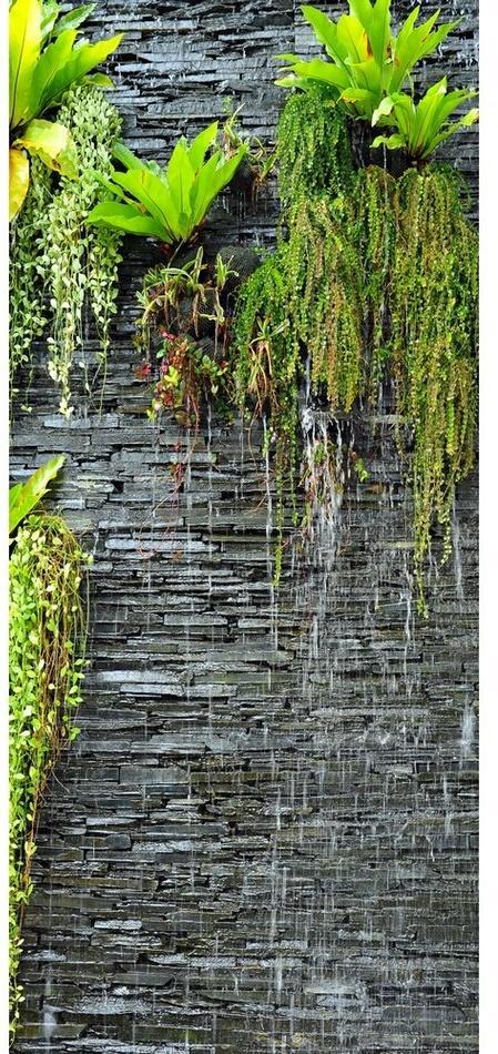 Vertikálna fototapeta Green in the wall, 90 x 202 cm